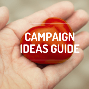 Campaign Ideas Guide
